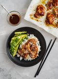 Hoisin Chicken. Traditional Asian cuisine. Chicken with sauce, r. Ice and pickled cucumbers stock images