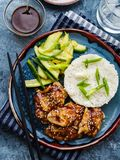 Hoisin Chicken. Traditional Asian cuisine. Chicken with sauce, r. Ice and pickled cucumbers stock photo