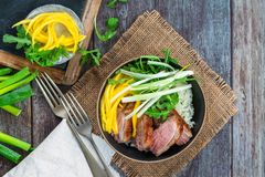 Hoisin duck with mango, spring onion, rocket lettuce salad and rice. Top view royalty free stock photos
