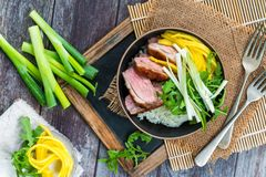 Hoisin duck with mango, spring onion, rocket lettuce salad and rice. Top view royalty free stock image