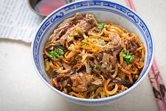 Hoisin duck noodles. Egg noodles with strips slow roasted duck in hoisin sauce with oak choi. Hoisin duck noodles. Egg noodles with strips slow roasted duck in stock images