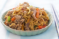 Hoisin duck. With pasta and vegetables stock photos