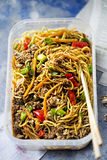 Hoisin duck. With pasta and vegetables stock image