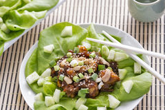 Hoisin lobster lettuce wraps Royalty Free Stock Photos