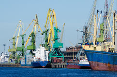 Hoisting cranes at seaport Royalty Free Stock Image