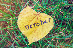 Hoja amarilla con la inscripción OCTUBRE hoja amarilla contra fondo de la hierba verde el símbolo de octubre es otoño Imagen de archivo