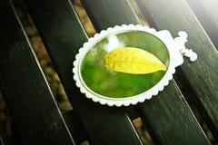 Hoja amarilla en el espejo Fotos de archivo libres de regalías