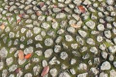Hoja anaranjada en textura de las piedras del piso Foto de archivo