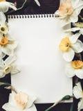 Hoja blanca vacía del álbum con las flores ligeras imagen de archivo libre de regalías