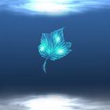 Hoja brillante bajo el agua Foto de archivo libre de regalías