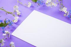 Hoja clara del Libro Blanco rodeada con las pequeñas flores azules y blancas en el fondo violeta Fotos de archivo libres de regalías