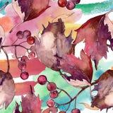 Hoja colorida del viburnum de la acuarela Follaje floral del jardín botánico de la planta de la hoja stock de ilustración