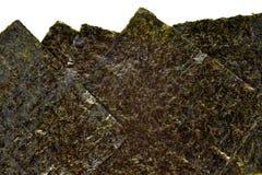 Hoja de alga marina de Nori Foto de archivo