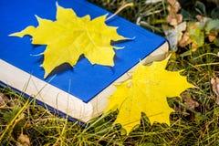 Hoja de arce amarilla en un libro Un libro en la hierba en el otoño f imagen de archivo