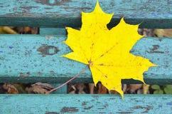 Hoja de arce amarilla en viejo fondo de madera azul Imagenes de archivo