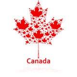 Hoja de arce canadiense stock de ilustración