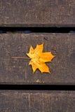 Hoja de arce en el puente de madera Foto de archivo
