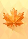 Hoja de arce polivinílica baja amarillo-naranja stock de ilustración