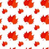 Hoja de arce roja Modelo de la hoja del icono del otoño ilustración del vector