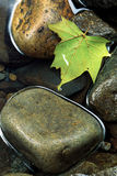 Hoja de arce y rocas en agua inmóvil imagen de archivo
