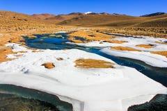 Hoja de hielo en hierbas, Bolivia Imágenes de archivo libres de regalías
