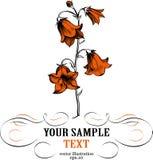 Hoja de la flor Imagenes de archivo