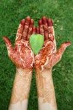 Hoja de la forma del corazón en manos de la alheña Foto de archivo