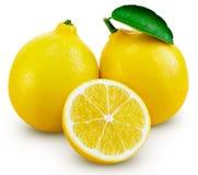 Hoja de la fruta del limón fotografía de archivo libre de regalías