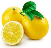 Hoja de la fruta del limón foto de archivo