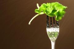 Hoja de la lechuga en una fork Foto de archivo libre de regalías