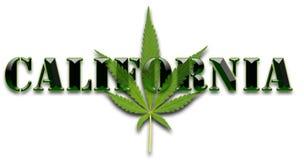 Hoja de la marijuana de California Imagenes de archivo