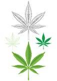 Hoja de la marijuana del cáñamo Imagen de archivo libre de regalías