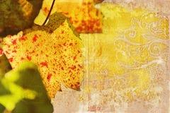 Hoja de la vid de uva de Grunge Foto de archivo libre de regalías
