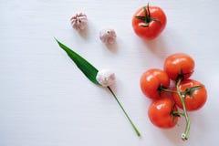 Hoja de las hierbas y del ajo con los tomates en un fondo de madera blanco imagen de archivo