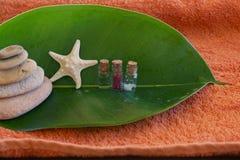 Hoja de los ficus con los tarros para los procedimientos del balneario y una estrella de mar Imagen de archivo libre de regalías