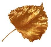 Hoja de oro Imagen de archivo libre de regalías