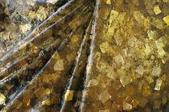 Hoja de oro en la estatua Imagen de archivo libre de regalías
