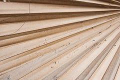 Hoja de palma secada del azúcar Imagen de archivo libre de regalías