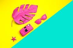 Hoja de palma tropical rosada del monstera, de gafas de sol y de la cámara en color intrépido vibrante en fondo dual Concepto de  foto de archivo libre de regalías