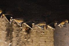 Hoja de sierra de la circular del metal. Foto de Abctract. herramientas del trabajo Fotos de archivo
