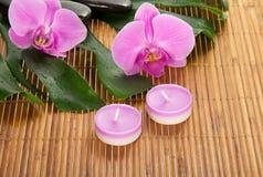 Hoja de un monstera, de una orquídea, de una vela y de piedras imagen de archivo libre de regalías