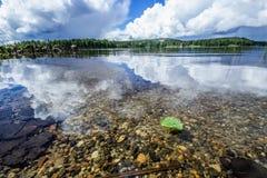 Hoja del abedul en el lago tranquilo Fotos de archivo libres de regalías