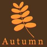 Hoja del acacia del vector Ilustración del otoño libre illustration