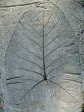 Hoja del cemento Imagen de archivo