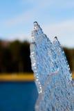 hoja del hielo Foto de archivo