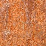 Hoja del hierro oxidado Fotografía de archivo libre de regalías