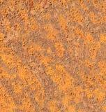 Hoja del hierro oxidado Fotografía de archivo