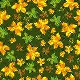 Hoja del otoño del modelo Imagen de archivo