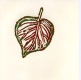 Hoja del otoño en verdes y rojo Fotografía de archivo libre de regalías