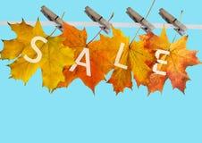 Hoja del otoño para la venta Foto de archivo libre de regalías